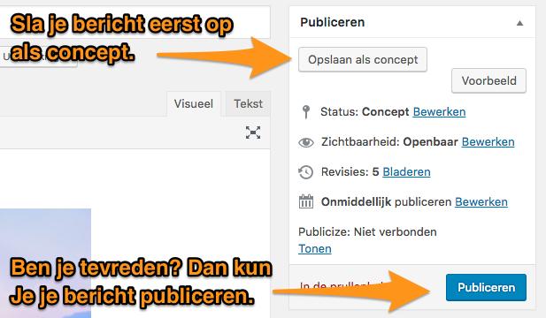 blog_handleiding_-_bericht_publiceren